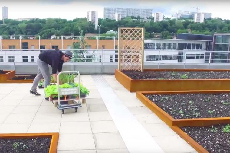 [VIDÉO] – Un potager urbain sur le toit de Groupama